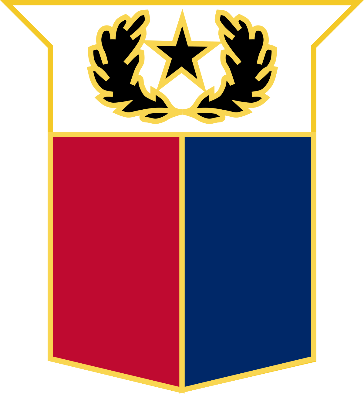 Texas Military Forces.