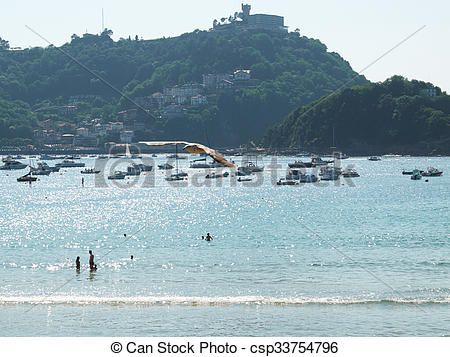 Stock Illustration of A gull flying in Concha bay. San Sebastian.