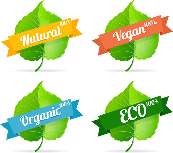 Green leavef with Eco labels vector.