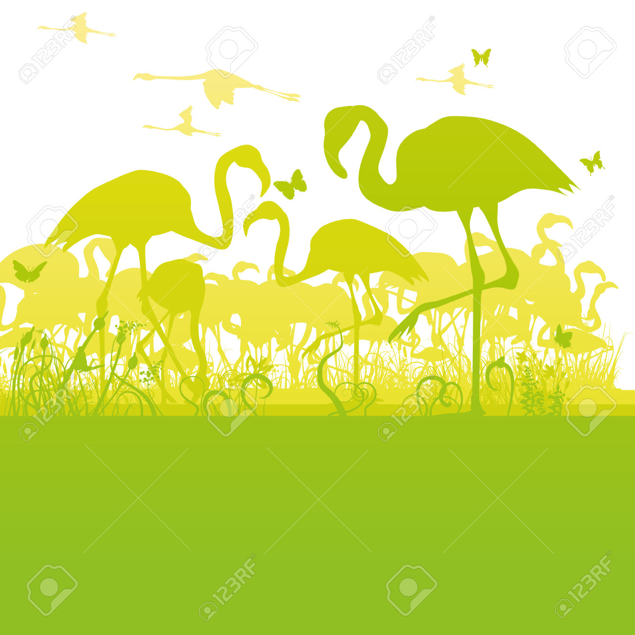 Flamingos At The Edge Of A Pond Royalty Free Cliparts, Vectors.