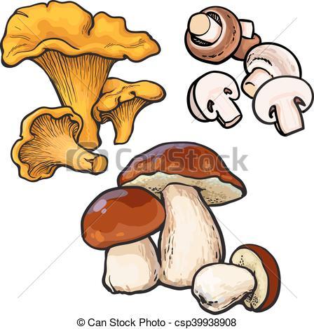 Vector Clipart of Set of chanterelle, champignon, porcini edible.