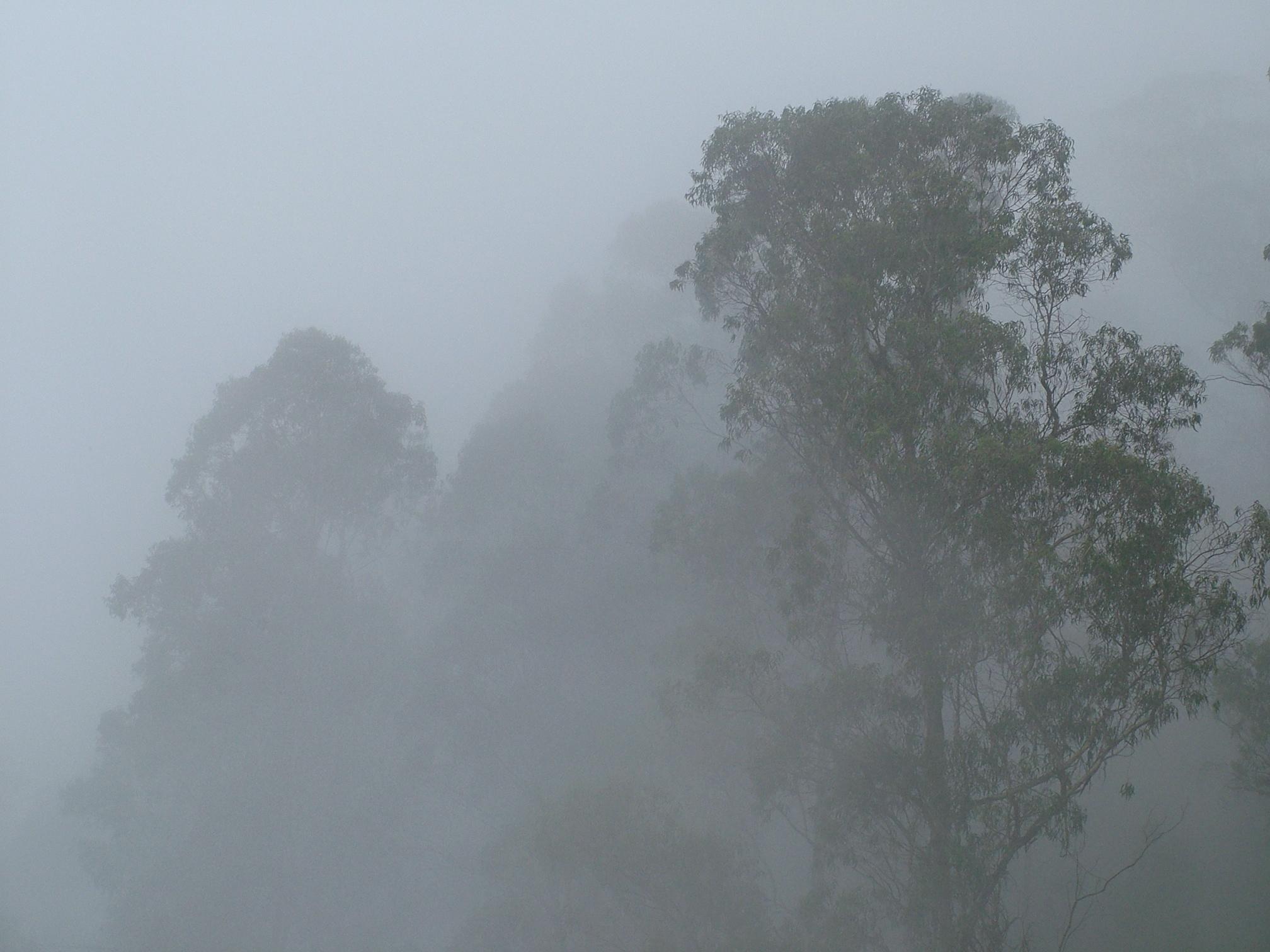 Fog clipart free.