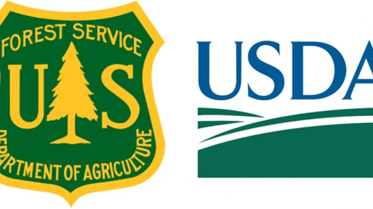 Why Is USDA Stripping the Forest Service of its Pine Tree.