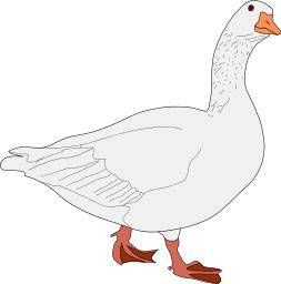 Goose Clip Art Download.