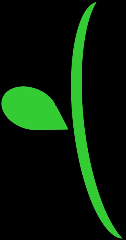 clipart flower stem #16