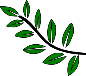 10 Leaf Stem Clip Art at Clker.com.