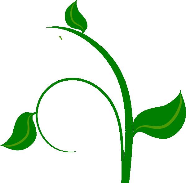 Green Leaf Clip Art at Clker.com.