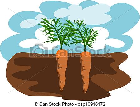 Clipart Vector of Carrots in the Ground.