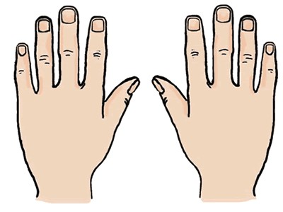 Clipart Hand & Hand Clip Art Images.