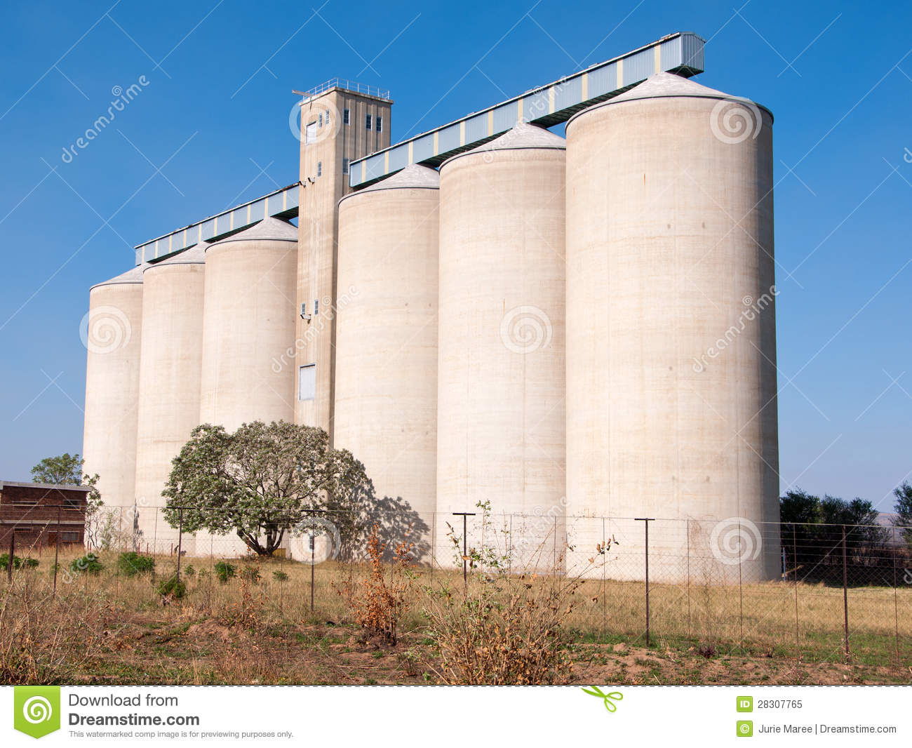 Grain Silo Royalty Free Stock Photo.