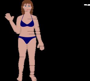 Human Body Clip Art at Clker.com.