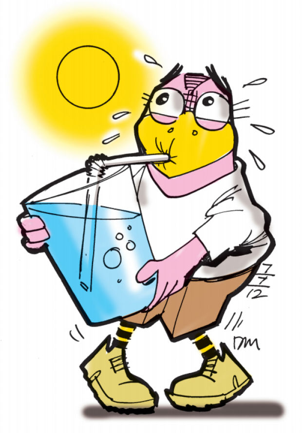 Picture Of Hot Weather.