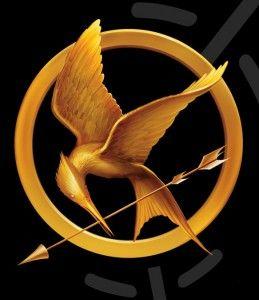 Make a Katniss Costume.