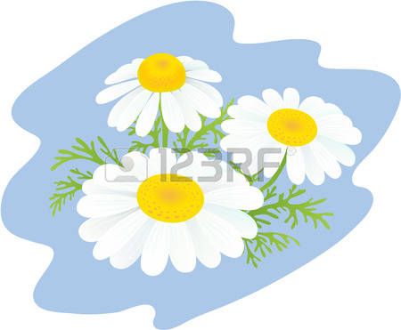 3,758 Inflorescence Cliparts, Stock Vector And Royalty Free.