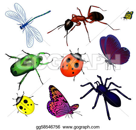 Royalty Free Insects Clip Art.