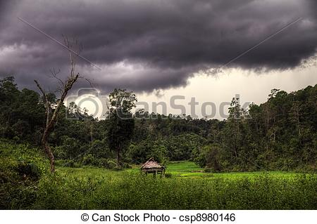 Stock Image of Thunder storm in the jungle.