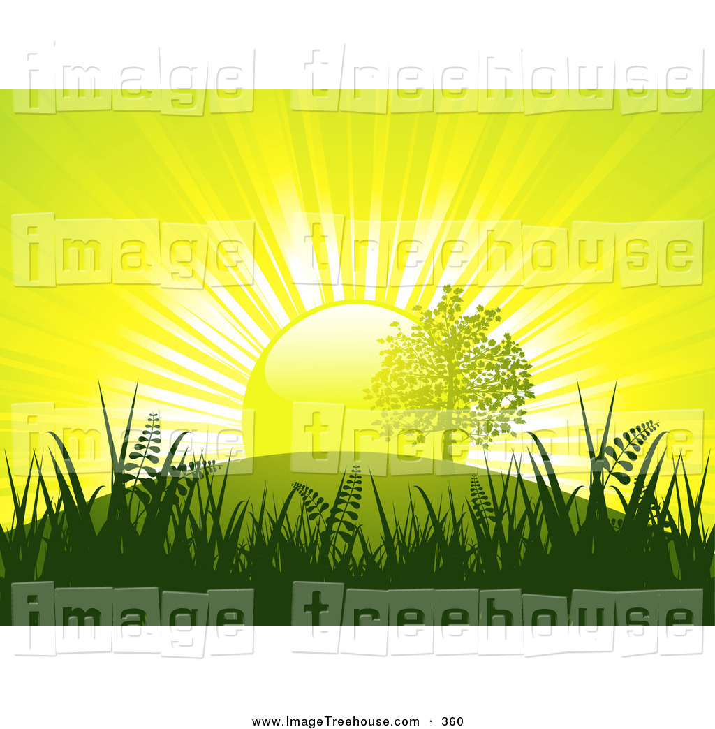 Clipart of a Bright White Light of the Sun Silhouetted Grasses and.