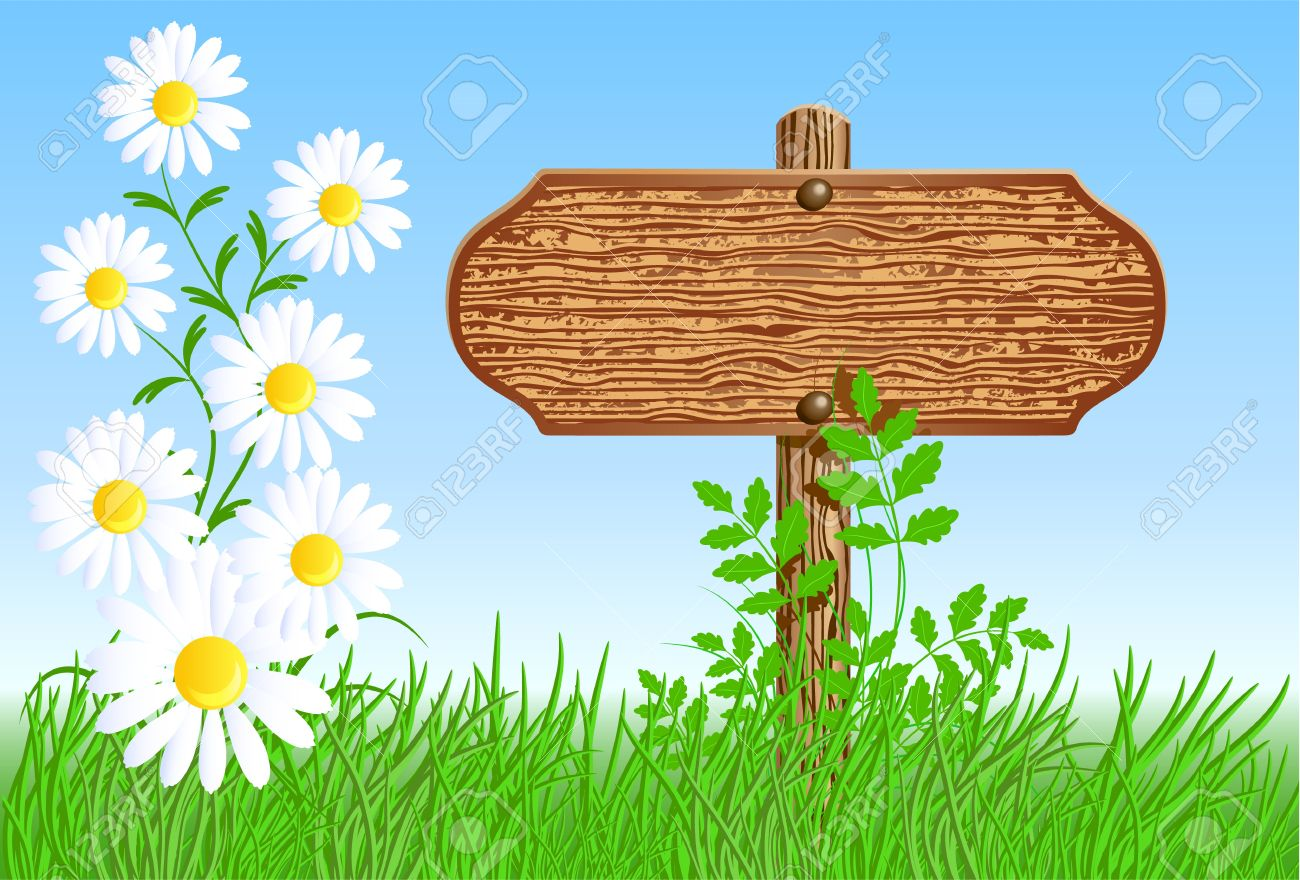 Wooden Signboard On The Meadow With Daisies Royalty Free Cliparts.