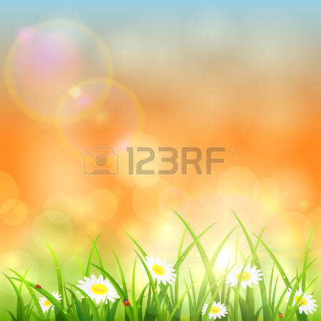 898 Morning Dew Stock Vector Illustration And Royalty Free Morning.