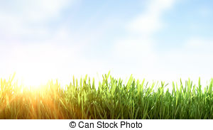 Clip Art of Fresh morning dew on spring grass, natural background.
