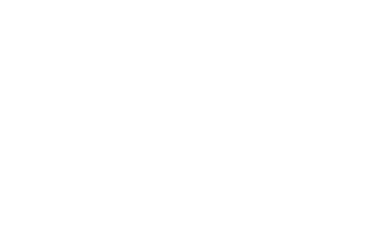 Li, Inc. — T: The New York Times Style Magazine.