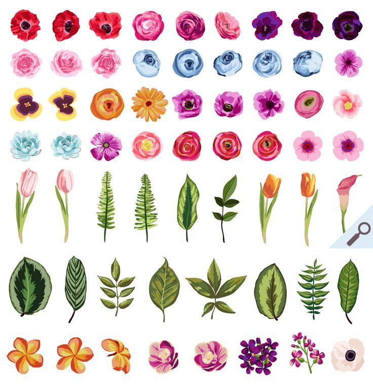 1000+ ideas about Love Flowers on Pinterest.