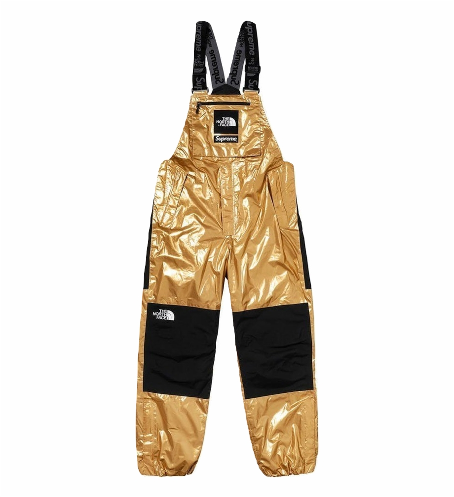 Supreme/the North Face Metallic Mountain Bib Pant.