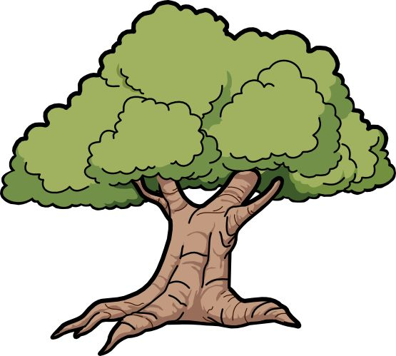 17 Best images about clip art trees on Pinterest.