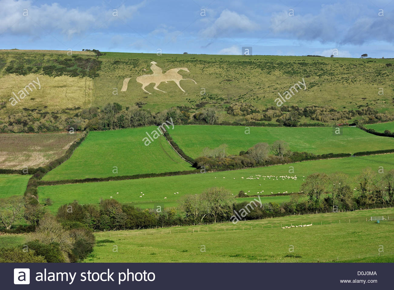 Osmington White Horse, Hill Figure Of George Iii Sculpted Into.