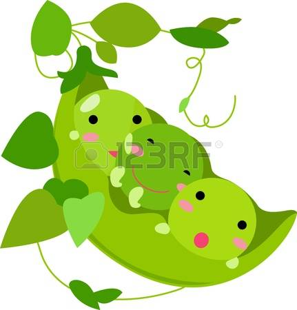 1,655 Peas In A Pod Stock Vector Illustration And Royalty Free.
