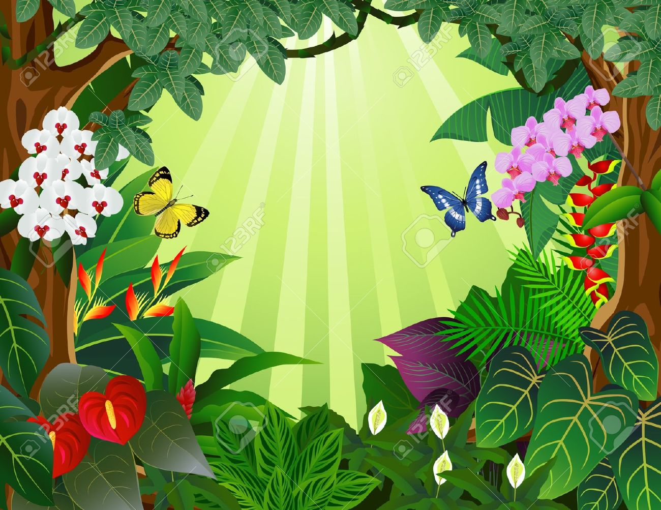Rainforest clipart 8 » Clipart Station.