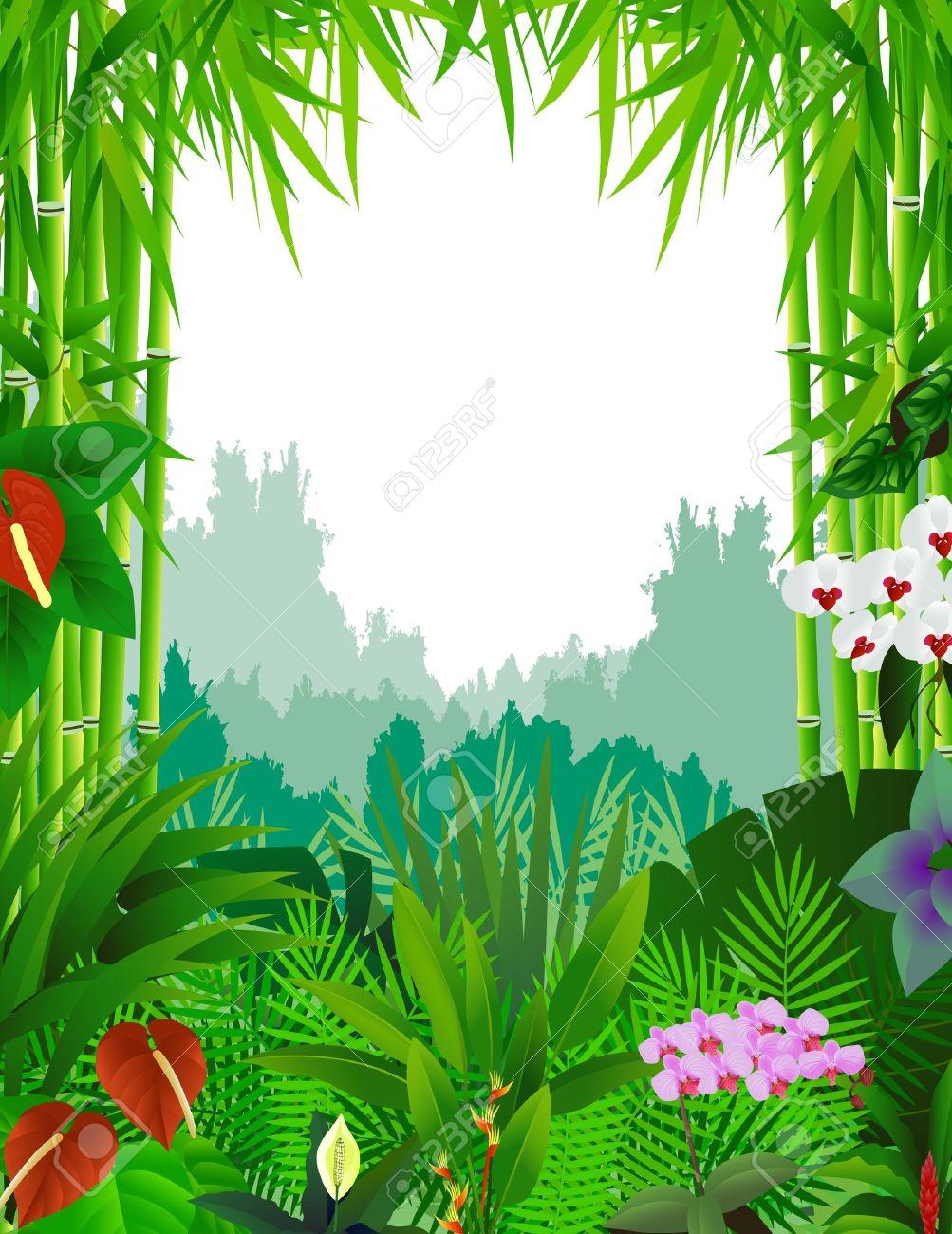 Rainforest Clipart Images.