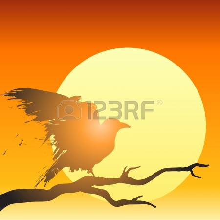 1,203 Setting Sun Stock Vector Illustration And Royalty Free.