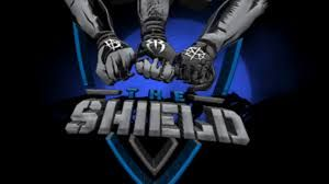 Image result for the shield wwe logo.