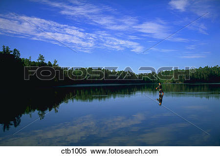 Stock Image of A man standing in Swamp Lake, Minnesota fly fishing.