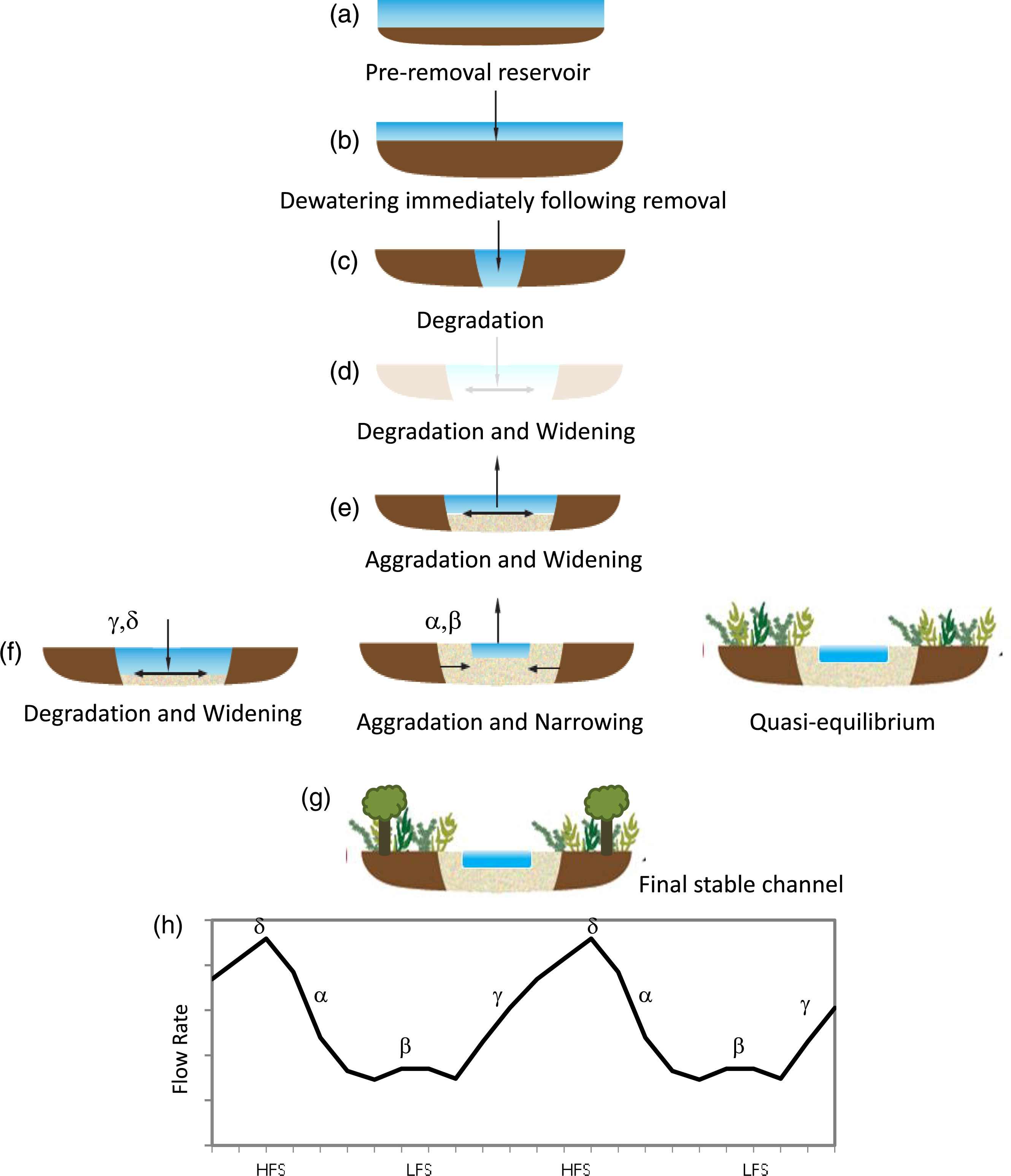 Importance of Hydrology on Channel Evolution Following Dam Removal.