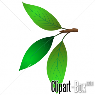 CLIPART TWIGS.