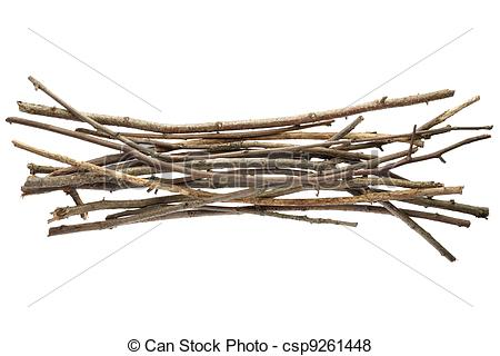 Pictures of Sticks and twigs, wood bundle isolated on white.