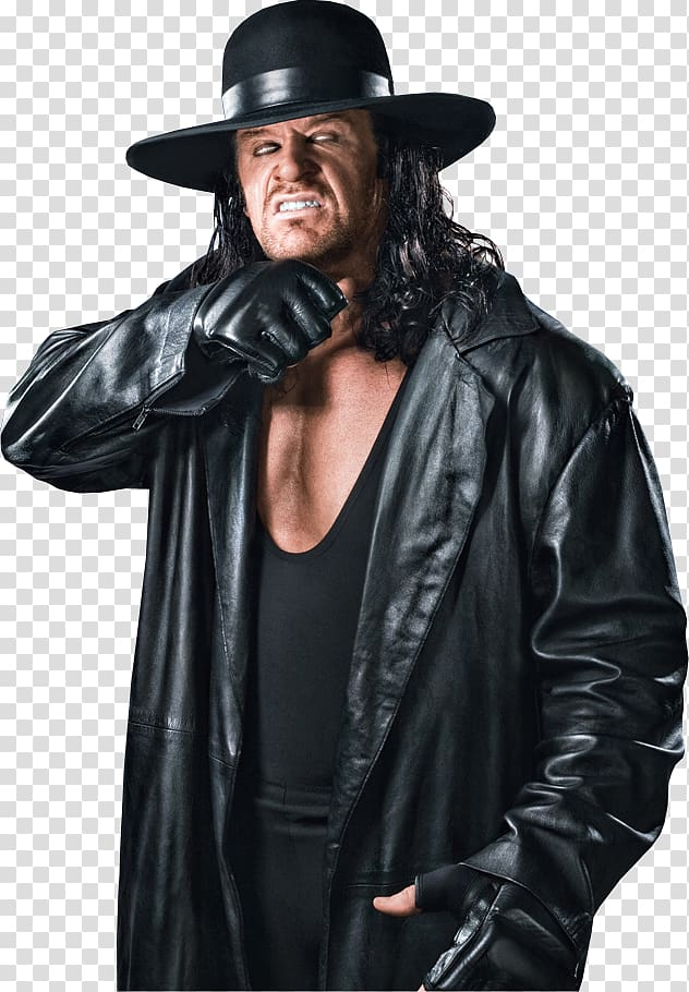 WrestleMania XXVI WWE Championship High.