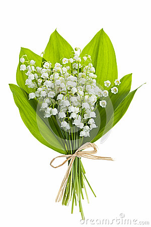 Valley of flowers clipart.