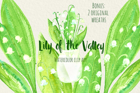 Lily of the valley watercolor digital clip art Lily of the.