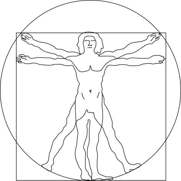 Vitruvian Man Clip Art at Clker.com.