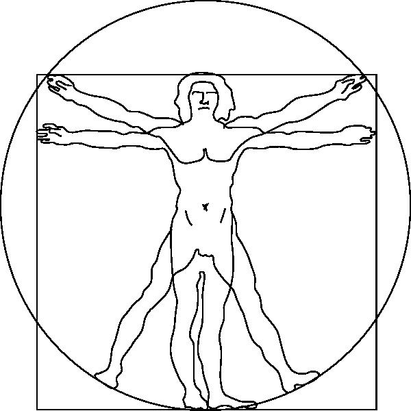 Vitruvian Man Clip Art at Clker.com.