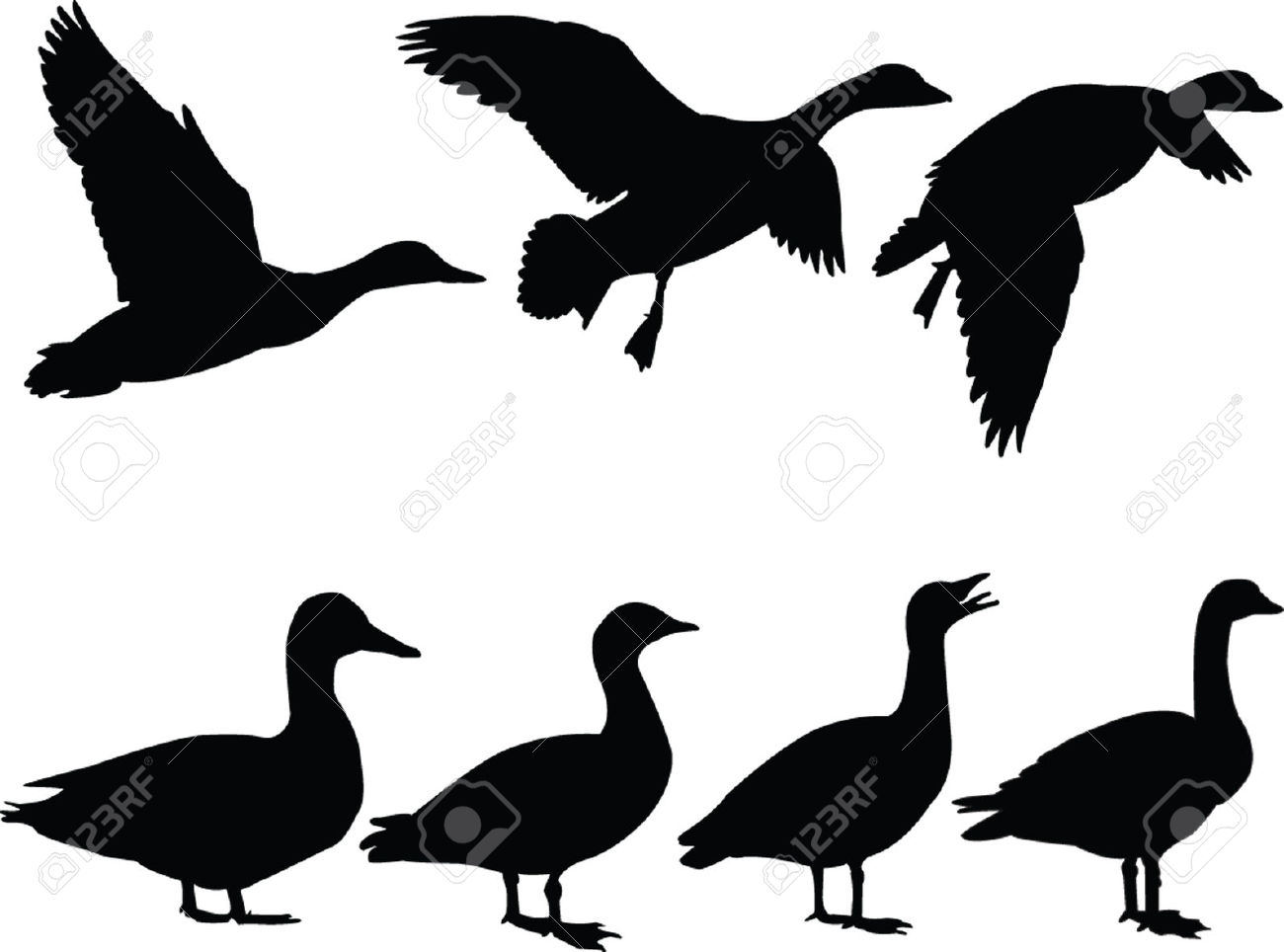 Duck Silhouette Clipart.