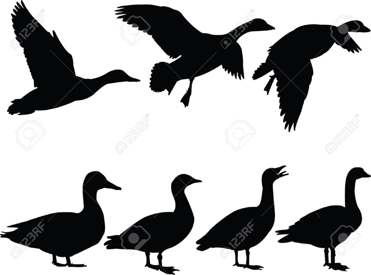 Duck Silhouette Clipart.