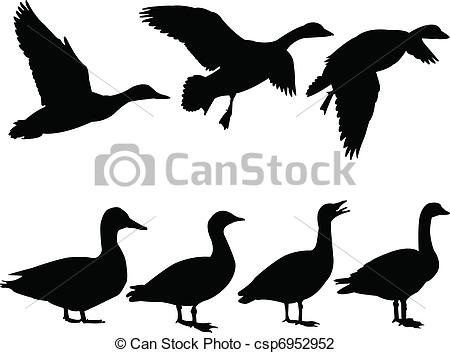 Duck Illustrations and Clipart. 16,438 Duck royalty free.