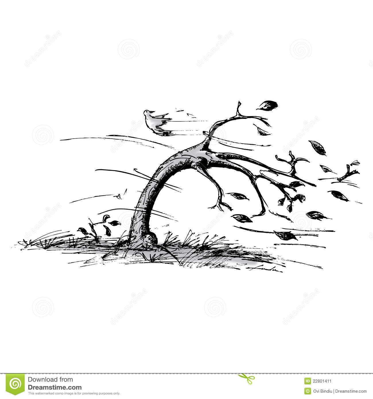 Trees blowing in the wind clipart.