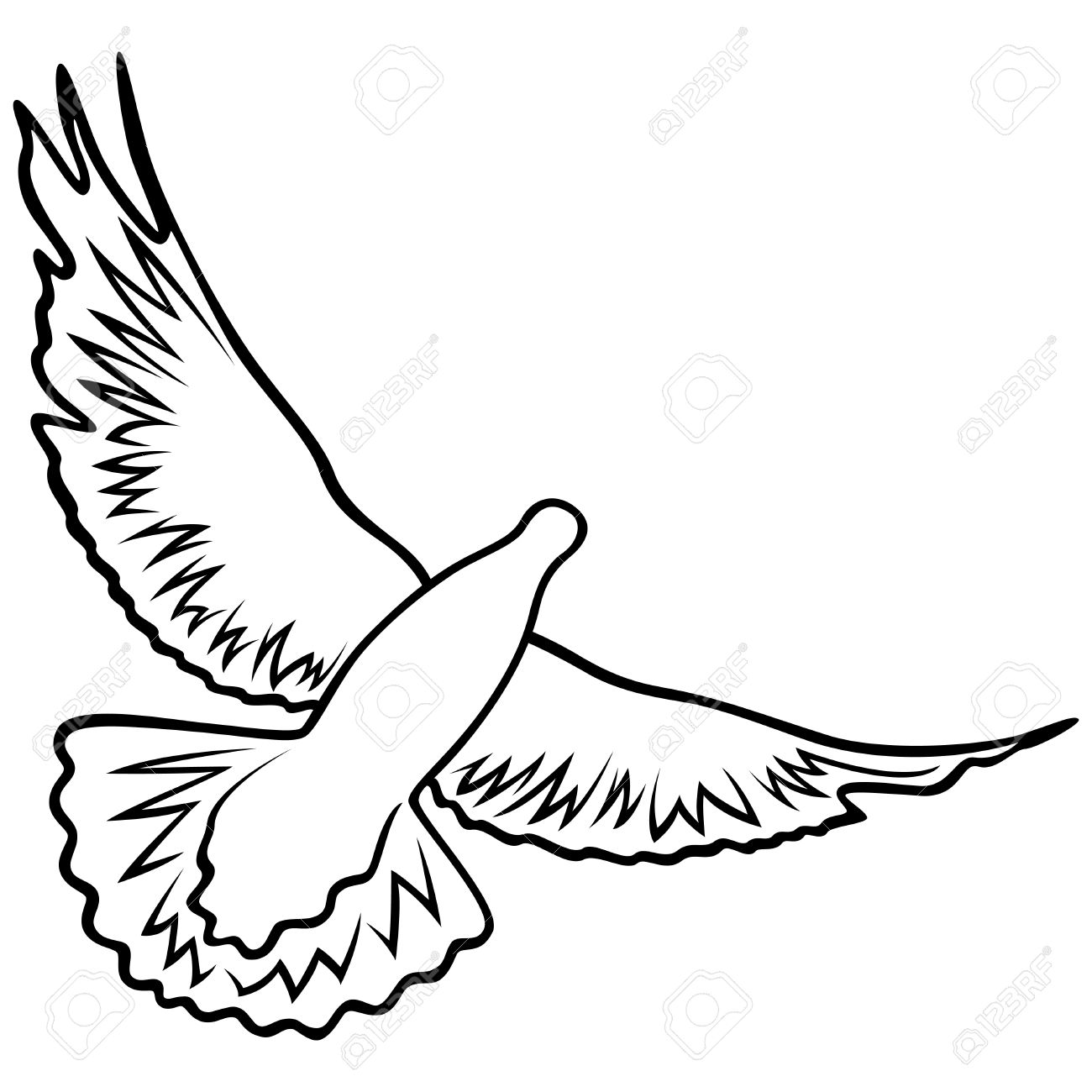 Dove In Flight With Widely Outstretched Wings, Outline Vector.