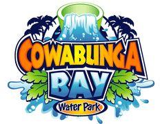 71 Best theme park logos images.