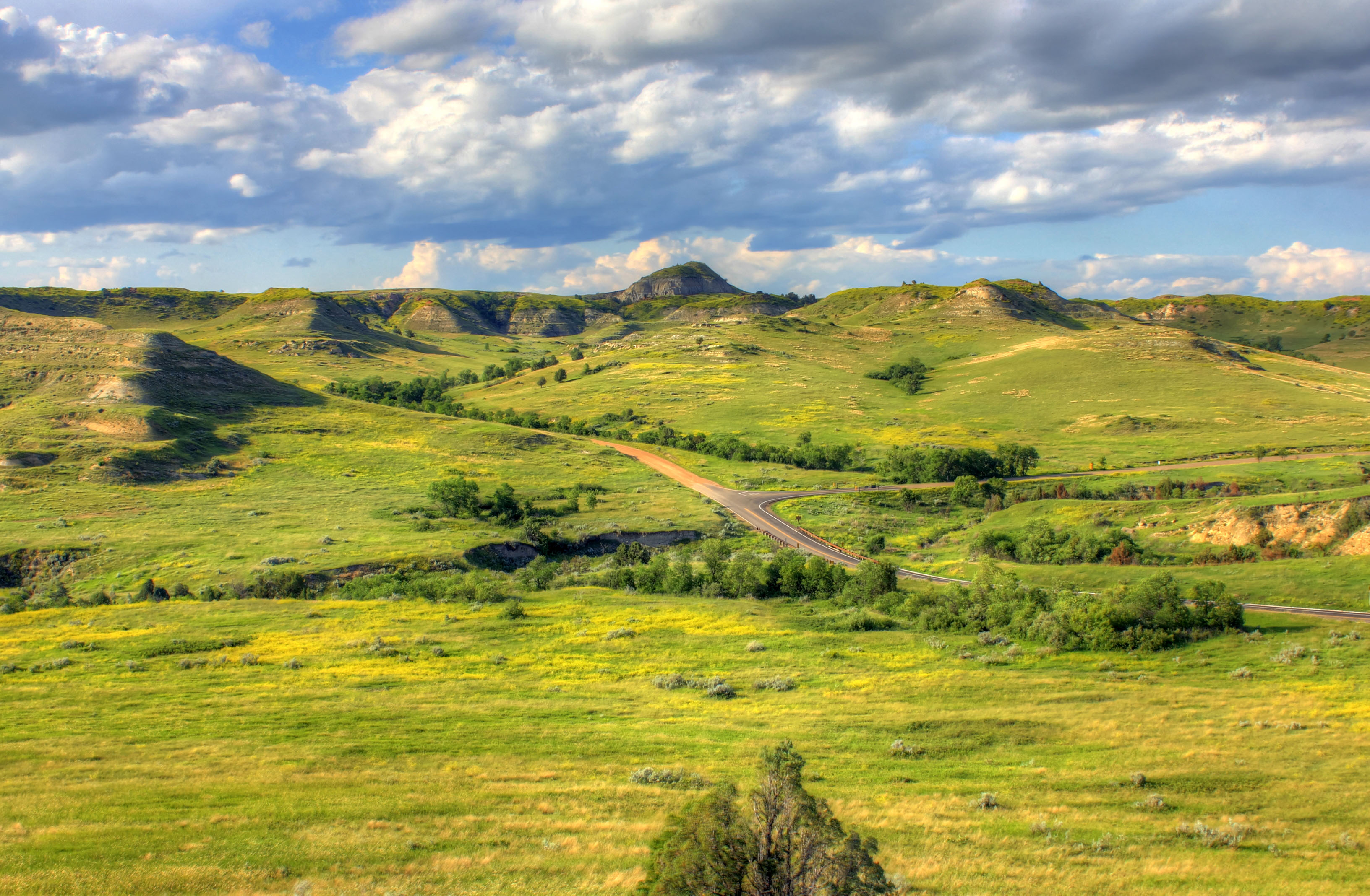 Landscapes of grasslands and hills at Theodore Roosevelt National.
